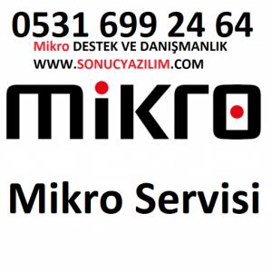 mikro servisi